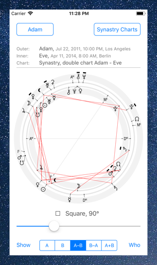 Time Nomad astrological chart of synastry